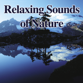 Relaxing Sounds of Nature