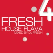 Fresh House Flava, Vol. 4