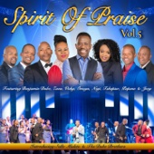 Spirit of Praise, Vol. 5