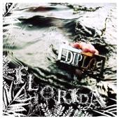 Florida cover art