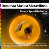 Meets Spanish Guitar, Vol.8