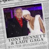 [Download] Winter Wonderland MP3