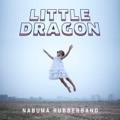Little Dragon Ritual Union (Maya Jane Coles remix)