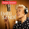 Imagem em Miniatura do Álbum: iTunes Session