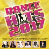 Various Artists - Dance Hits 2017 artwork