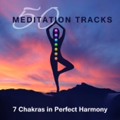 50 Meditation Tracks: 7 Chakras in Perfect Harmony, Songs for Deep Journey, Nature Sounds to Liberate Your Spirit