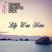 Sounds Unlimited Orchestra - Lily Was Here artwork