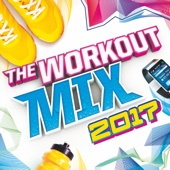 The Workout Mix 2017 - Various Artists