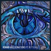 Hallucinations (feat. R I T U A L) - Single, R3hab