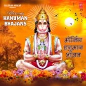 Hariharan - Shree Hanuman Chalisa  artwork