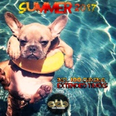 Summer 2017 Compilation Dance Commercial House Songs Top Hits New Best Music (Extended Mix) - Various Artists
