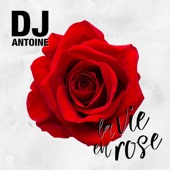 La Vie en Rose (DJ Antoine Vs Mad Mark 2k17 Mix) - Single