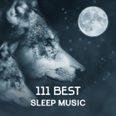 111 Best Sleep Music – Nature Sounds to Fall Asleep, Healing Lullaby, Find Inner Peace, Relax the Mind, Chinese Music Treatment for Better Sleep