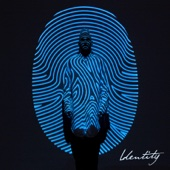Identity (Deluxe Edition) - Colton Dixon Cover Art