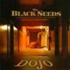Into the Dojo, The Black Seeds
