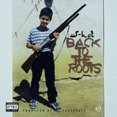 S-HOT - Back To The Roots Grafik