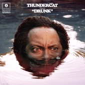Thundercat - Drunk artwork