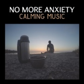 No More Anxiety: Calming Music, Sound Therapy, Slow Down Life, Overcome Fear, Mental Agitation