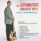 The Guitarmaster's Greatest Hits