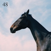 48 (feat. Jay Prince) [Free mp3 Download songs and listen music]