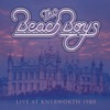 Good Timin' - Live at Knebworth 1980, The Beach Boys