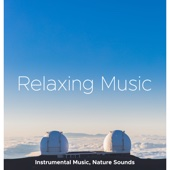 Relaxing Music - Instrumental Music, Nature Sounds