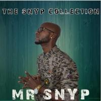 MR. SNYP - Cri De Revolte