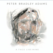 My Arms Were Always Around You - Peter Bradley Adams