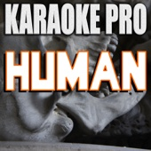 Human (Originally Performed by Rag'N'Bone Man) [Karaoke Version] - Karaoke Pro