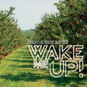 Brickbreaker - Wake Me Up artwork