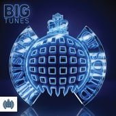 Big Tunes - Ministry of Sound - Various Artists