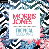Tropical Summer Mixes - Morris Jones