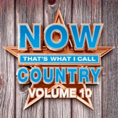 NOW That's What I Call Country, Vol. 10 - Various Artists