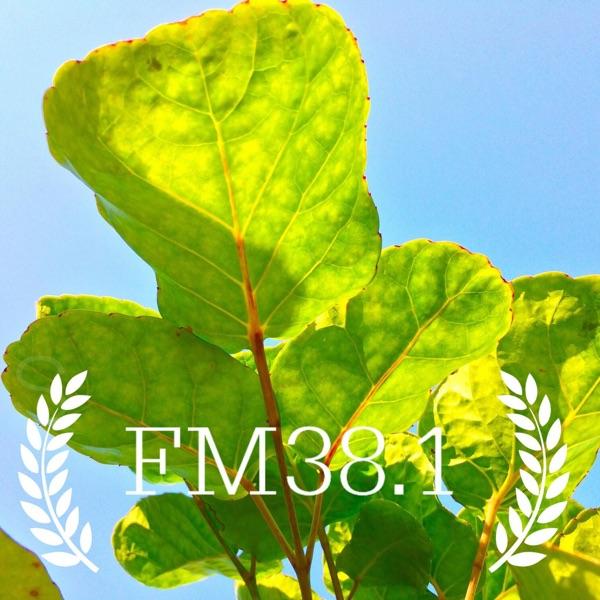 FM38.1 琥珀台