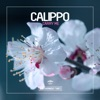 Carry Me - EP, Calippo
