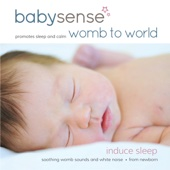 Womb to World - Womb Sounds