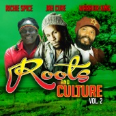 Roots & Culture, Vol. 2 - Richie Spice, Jah Cure & Warrior King