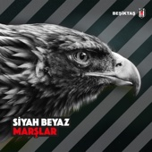 Various Artists - Siyah Beyaz Marşlar artwork