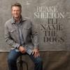I ll Name the Dogs - Blake Shelton mp3