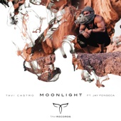 Moonlight (feat. Jay Fonseca)