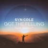 Syn Cole - Got the Feeling (feat. kirstin) artwork
