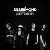 Silbermond - Leichtes Gepäck - Live in Dresden Grafik