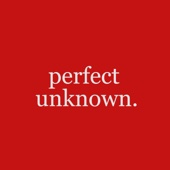 Perfect Unknown - Marcus Johns