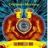 Drunken Monkey - Single, Salmonella Dub