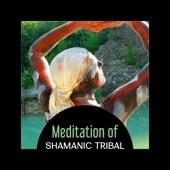 Meditation of Shamanic Tribal – 50 Native Amercian Songs, Apache Chiricahua, Spirit of the Eagle, Indian Journey - Native Meditation Zone