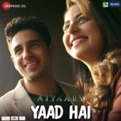 Ankit Tiwari & Palak Muchhal - Yaad Hai (From