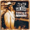 Lou Bega - Mambo No. 5  a Little Bit of..