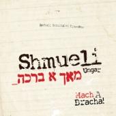 Shmueli Ungar - Mach a Bracha!  artwork