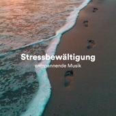 [Download] Musik zum Lernen MP3