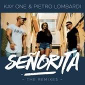 Señorita (Gestört aber GeiL Remix)
